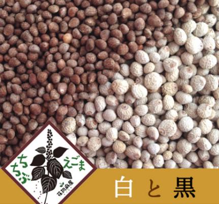 sementes de perila