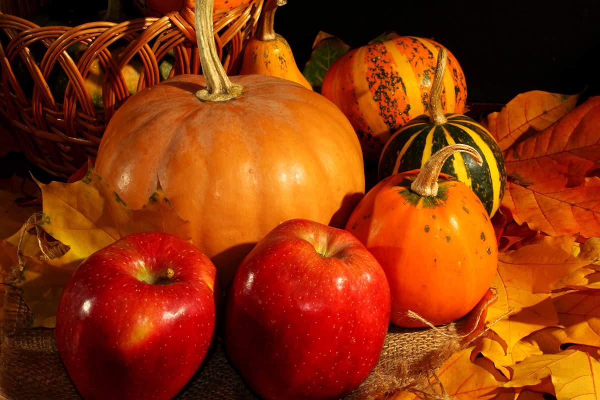 Alimentos do outono-inverno: mais baratos e nutritivos!